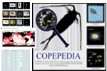 about COPEPEDIA box