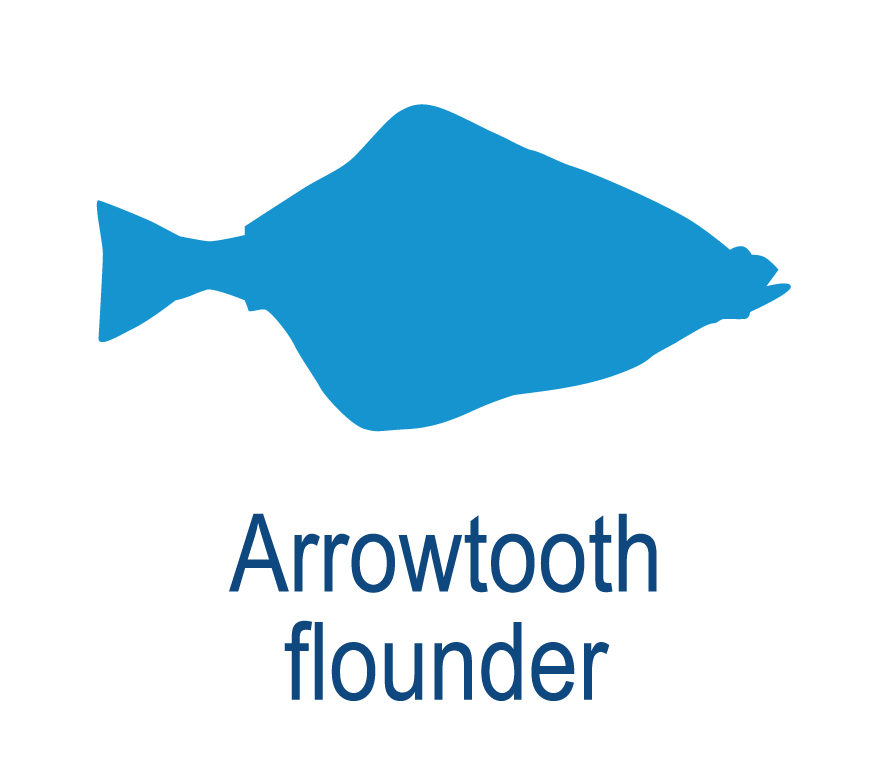 Arrowtooth flounder