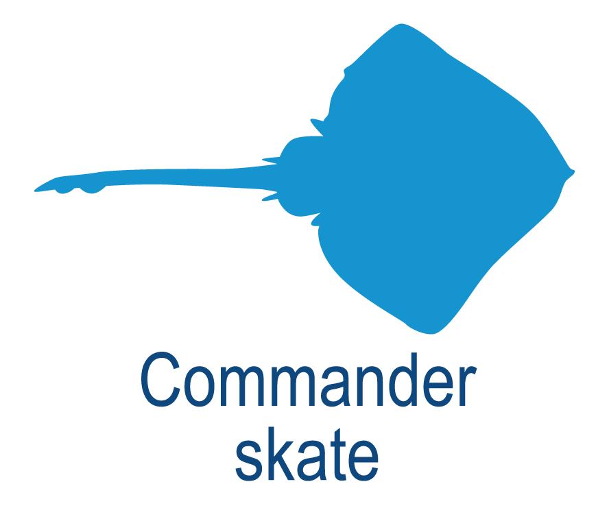Commander skate