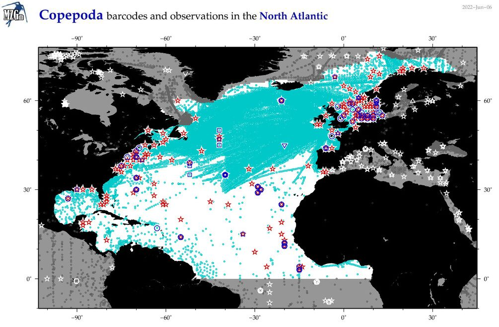 Map of North Atlantic copepoda and barcodes