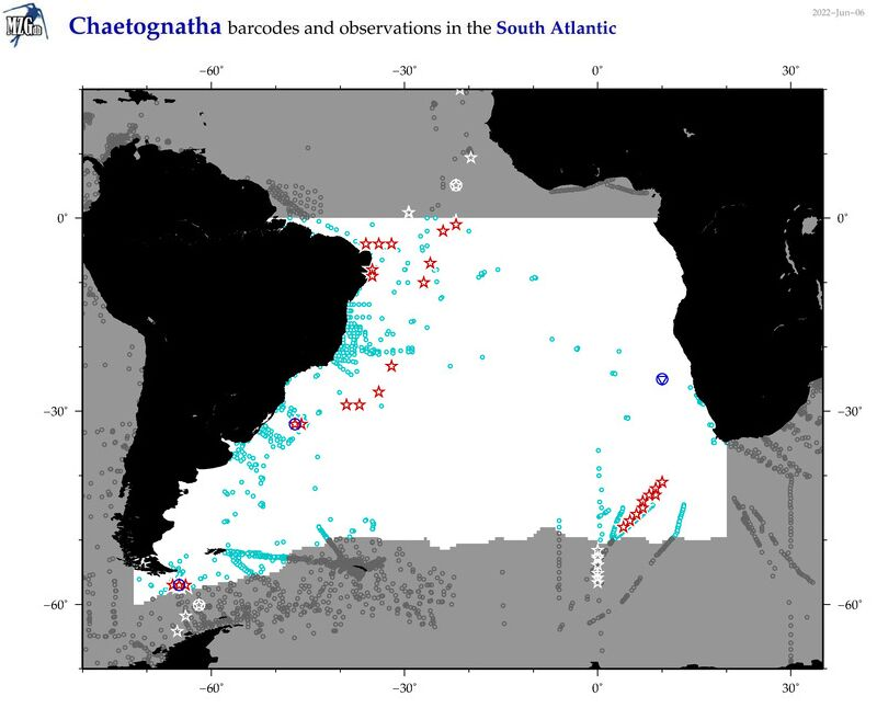 Map of South Atlantic chaetognatha and barcodes