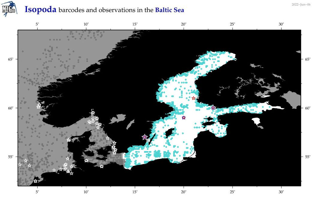 Map of isopod species observations and barcode distribution in Baltic Sea.